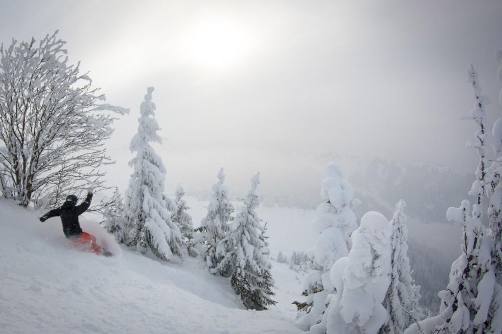 Fresh snow portes du soleil