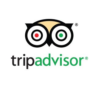 Mint Logo TripAdvisor