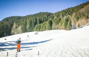 Splitbarding in the snow toward the trees