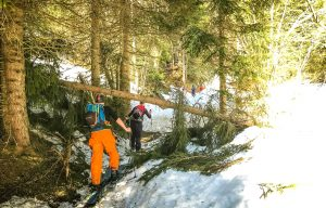 Splitboarding through the trees in the snow