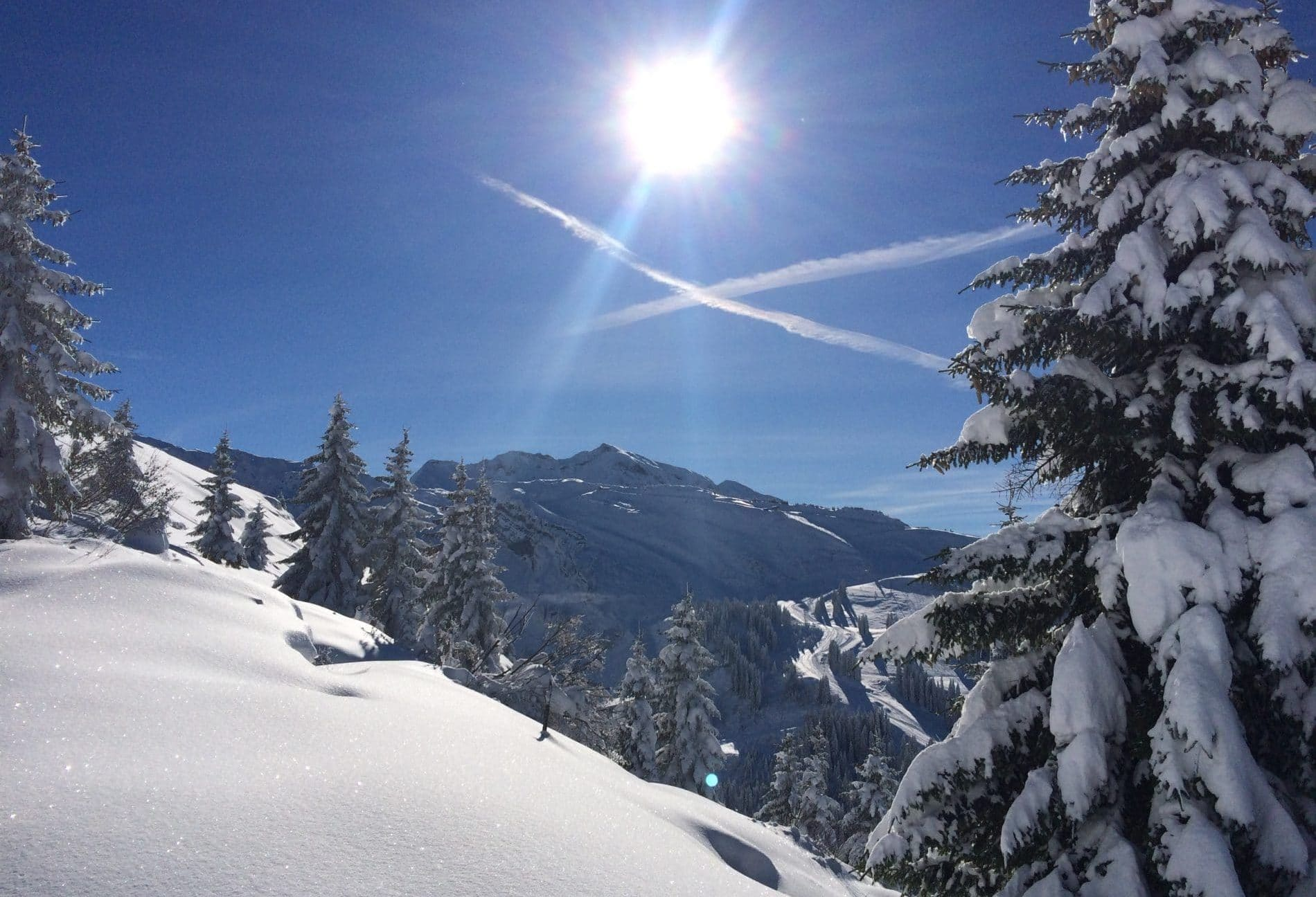 covid-19 FAQs ski season